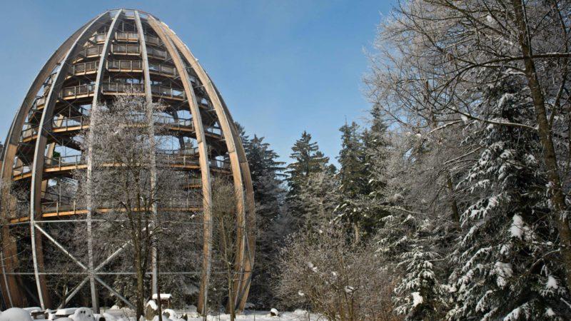 Stezka v korunách stromů v Bavorsku
