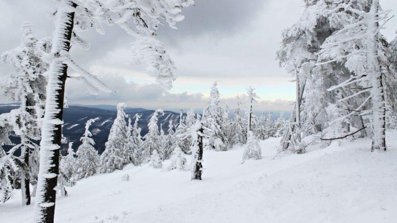 Na vrcholu Šeráku ve Ski Ramzová.