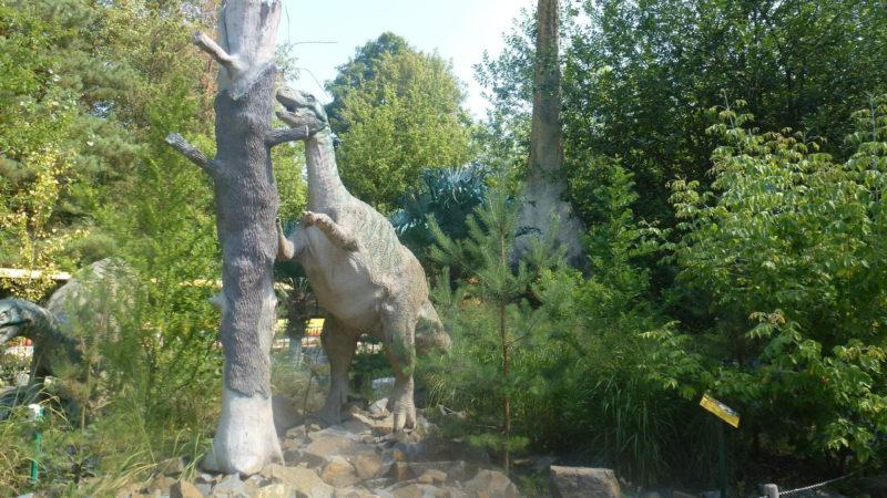 Někteří dinosauři jsou jako živí!