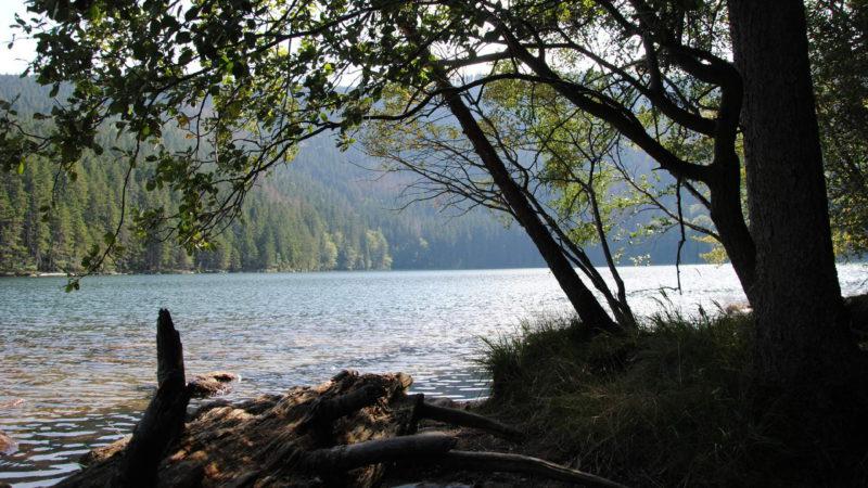 Černé jezero je opravdu nádherné