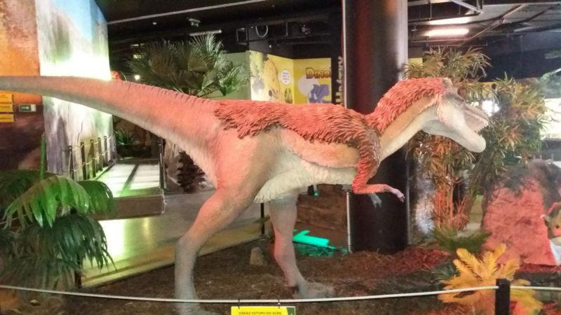 Dinopark je v provozu po celý rok