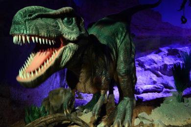 Dinopark Liberec Plaza – Ceník, otevírací doba, recenze