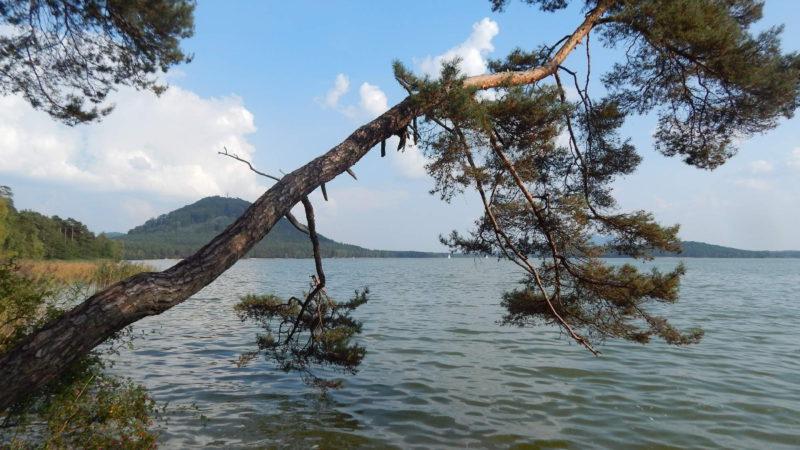 Máchovo jezero má mnoho romantických zákoutí