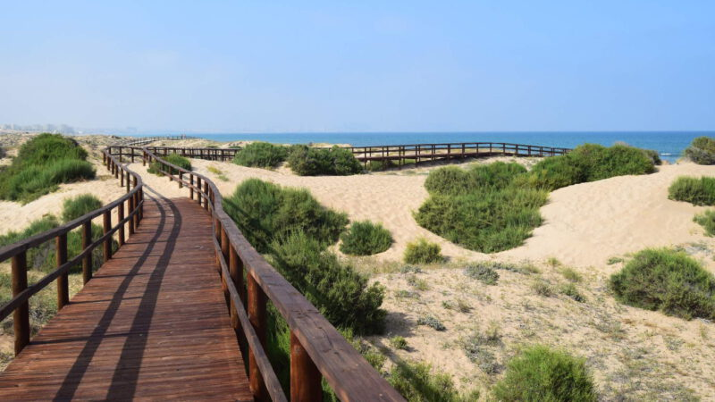 Bridges for a more comfortable crossing of sand dunes