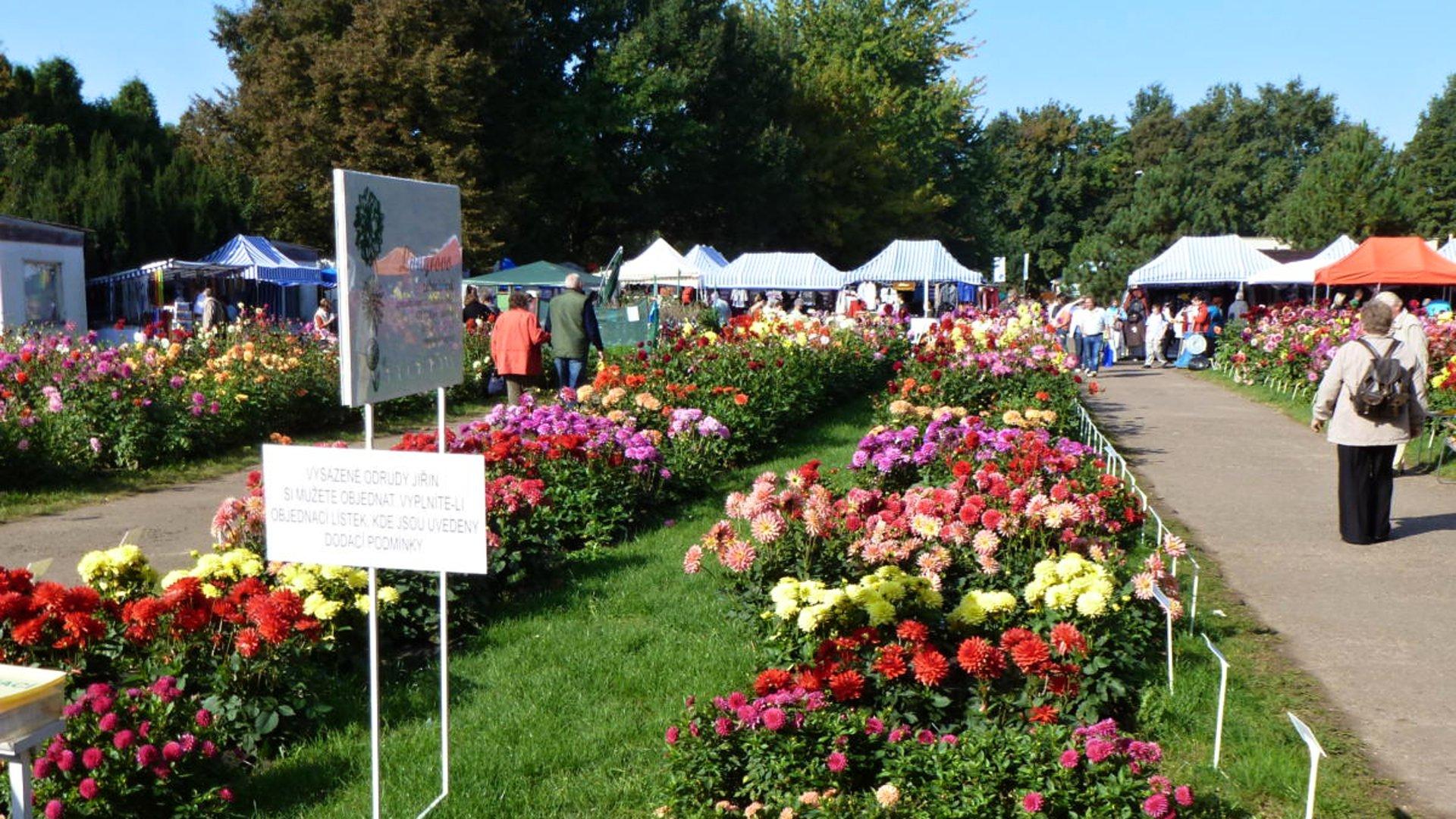 Zahrada Čech 2020 – Průvodce výstavou zahrádkářů a zemědělců