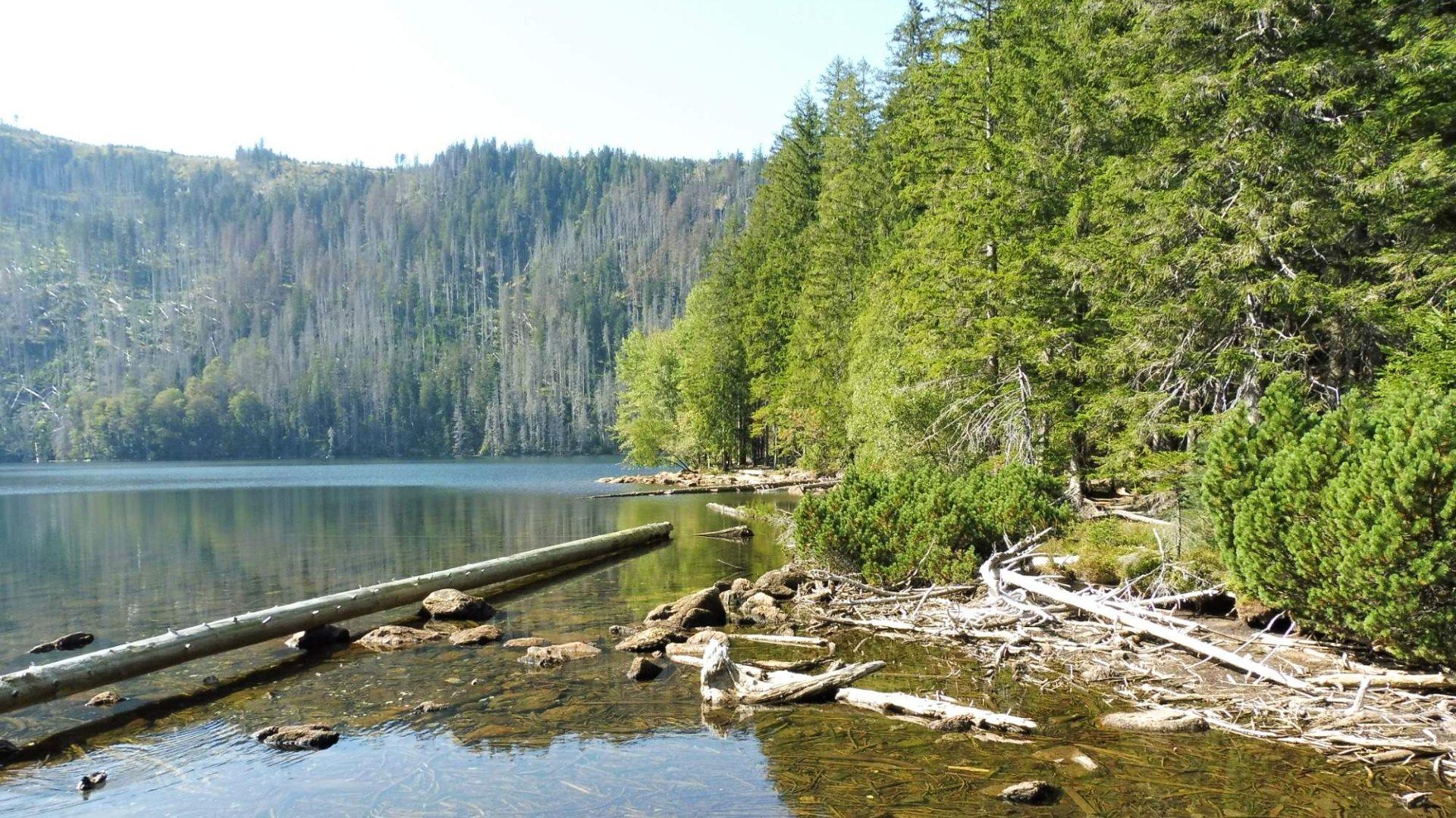 Nejhlubší jezera v Česku, na Slovensku, v Evropě, na světě
