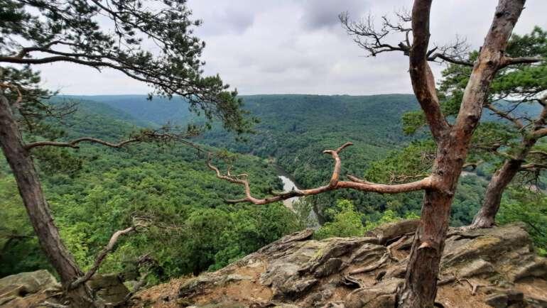 Národní park Podyjí – Zajímavosti, výlety, naše tajné tipy!